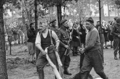 当年纳粹德国奥斯维辛集中营管理局控制的地区面积达40平方公里,集中