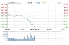 沪指跌逾2%失守3000 两市不足百股上涨