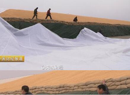 """中国2亿吨玉米库存""""挤爆""""仓库 堪称""""堰塞湖"""